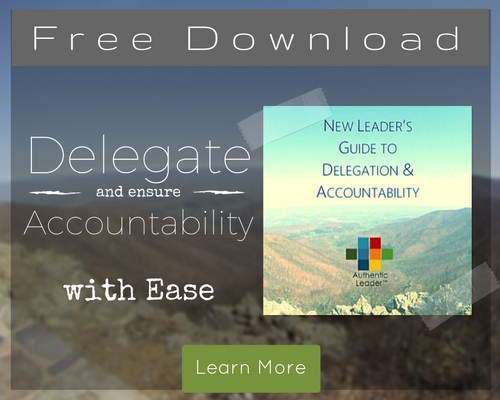 Delegate and ensure Accountability with ease